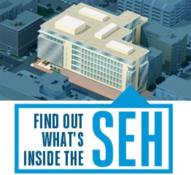 Find Out What's Inside SEH