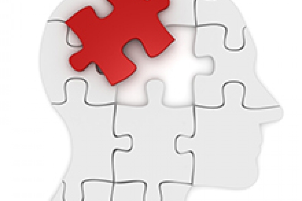 graphical representation of a head shaped by puzzle pieces and one of the top puzzle pieces at the top back of the head is red