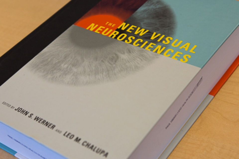 Cover of Leo Chalupa's book, The New Visual Neurosciences