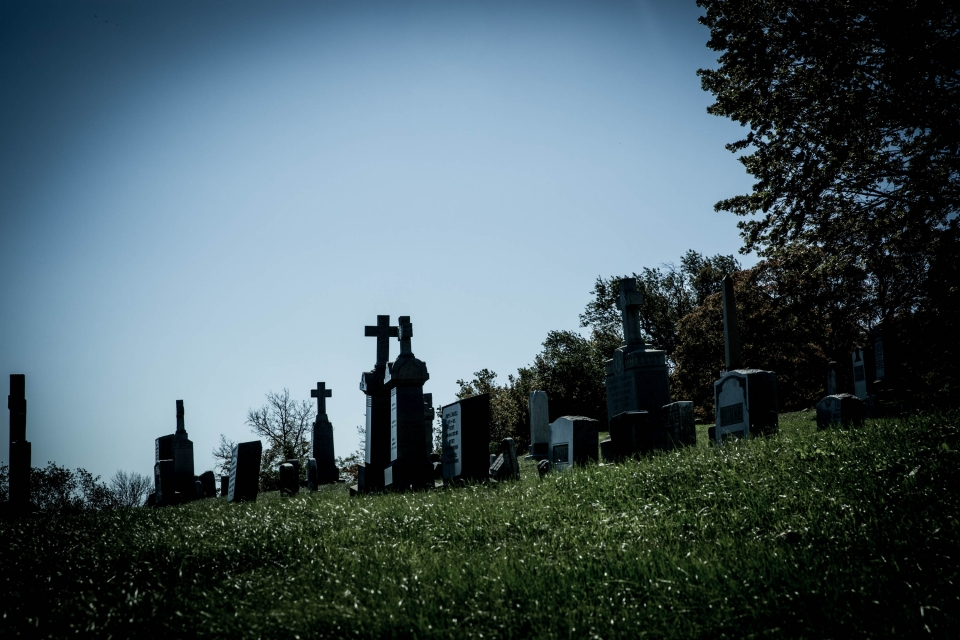 Image of Holy Rood Cemetery.