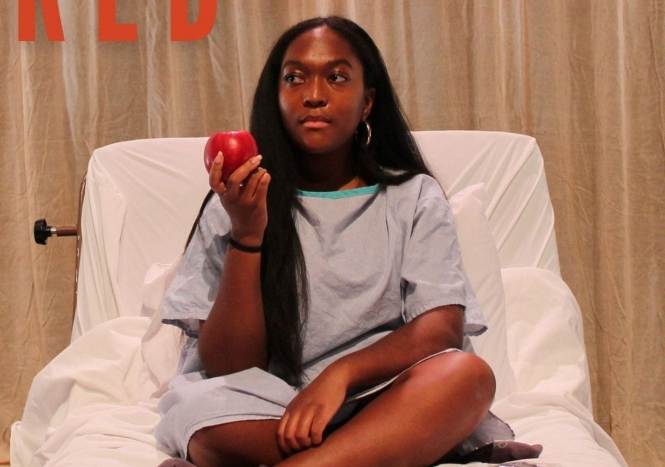 Image of person holding an apple in a hospital bed