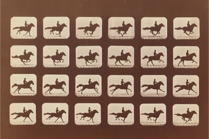 """""""Horses. Running. Phyrne L. No. 40,"""" by Eadward Muybridge, appears in """"Intersections,"""" an exhibition of photographs and videos"""