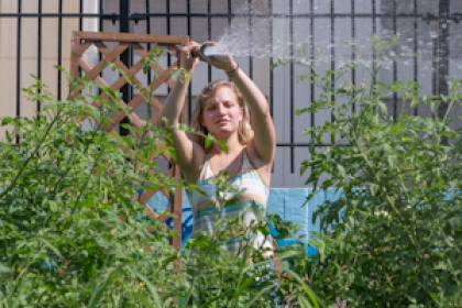 student waters produce and plants in GroW Garden